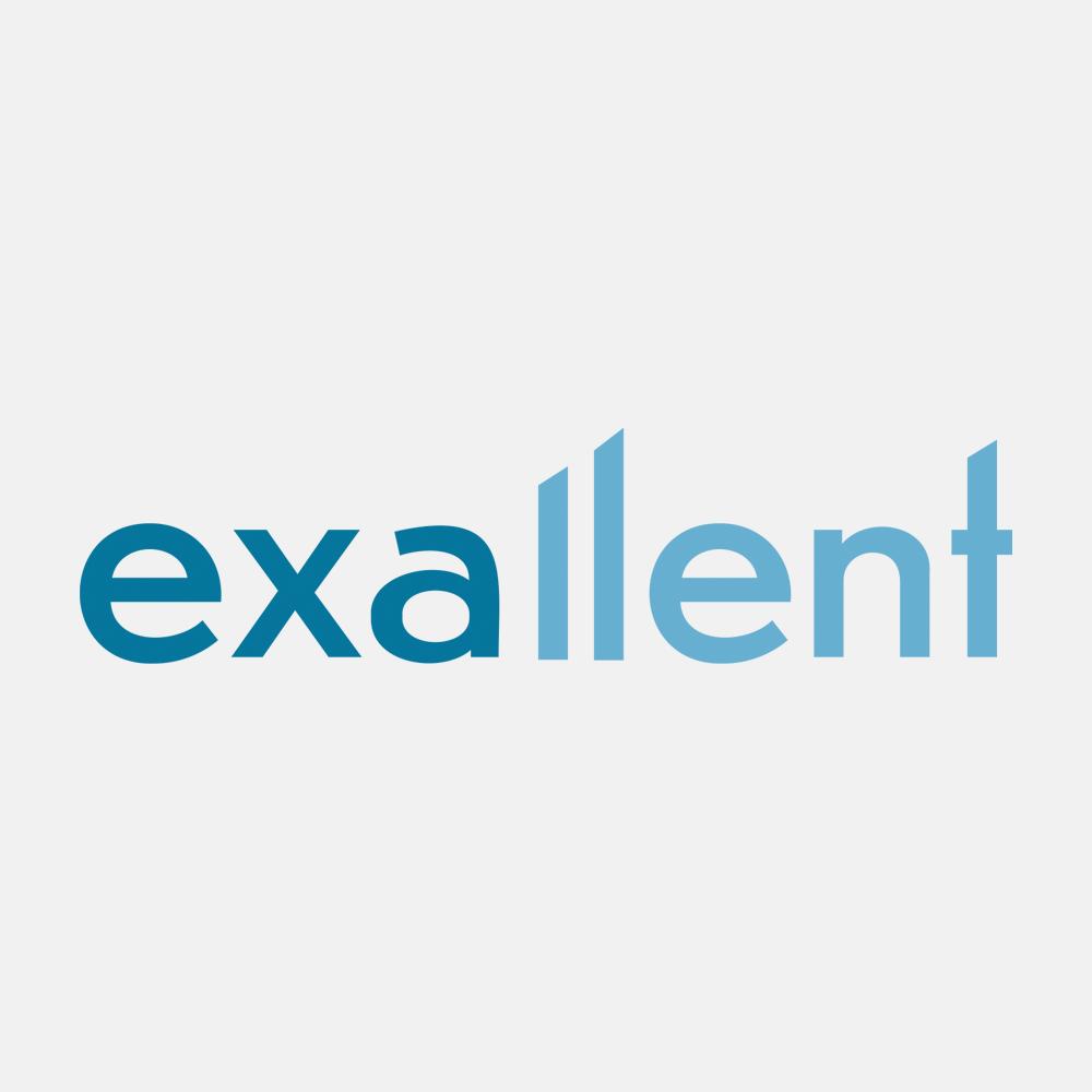 Logo-en-huisstijl-ontwerp-exallent